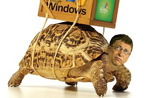 Time's Bill Gates Turtle